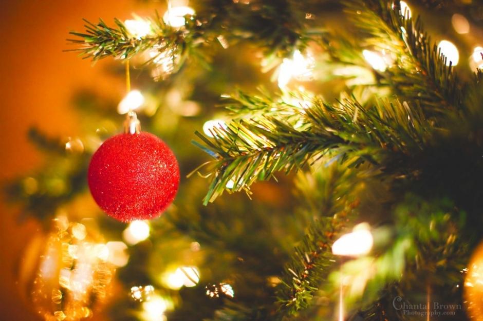 Immagini Di Natale On Tumblr.Top 10 Punto Medio Noticias Foto Con Luci Di Natale Tumblr